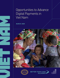 Opportunities to Advance Digital Payments in Viet Nam